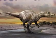 dinozaur carnivor