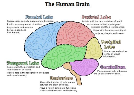 poluarea-aerului-creier---stiinta-tehnica-1