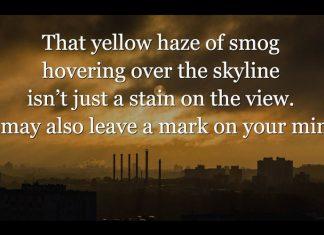 poluarea-aerului-creier---stiinta-tehnica-3