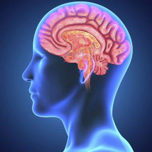 mintea-umana-inteligenta-artificiala-stiinta-tehnica-7