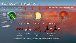 decarbonizare-co2-stiinta-tehnica-9