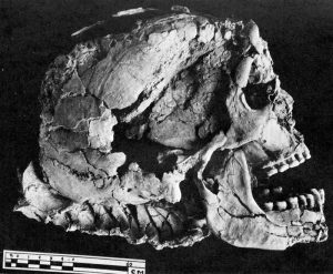 jafuri-mesopotamia-isis-stiinta-tehnica-15