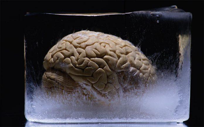 creier-criogenie-stiinta-tehnica-1