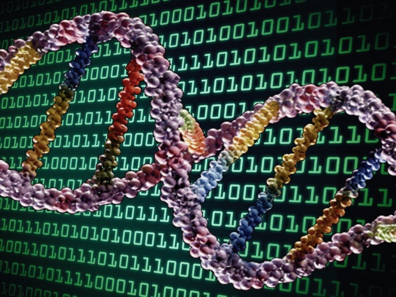 masina-turing-epigenetica-stiinta-tehnica-6