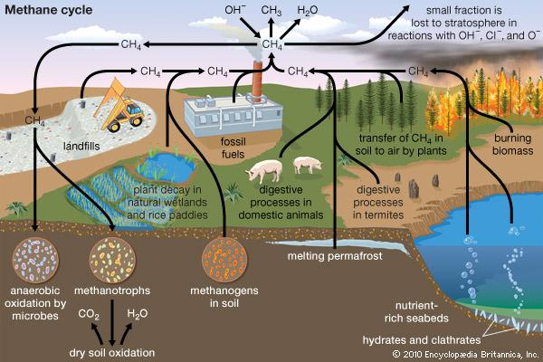 metan-poluare-incalzire-globala-stiinta-tehnica-8