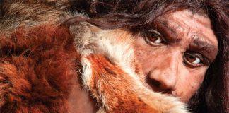 neanderthal-omul-nou-stiinta-tehnica-1