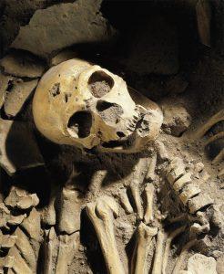neanderthal-omul-nou-stiinta-tehnica-2
