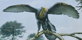 dino-păsări