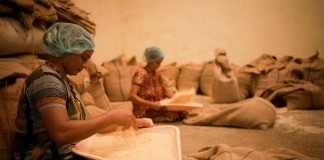 foametea globala