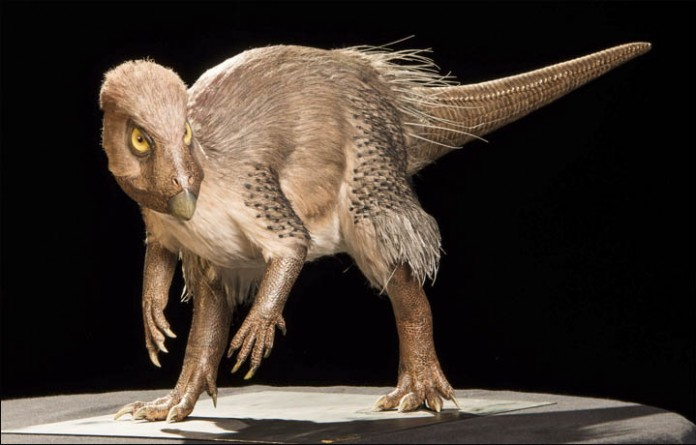 dinozaur cu pene