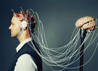 creier-minte-inteligenta---stiinta-tehnica-1